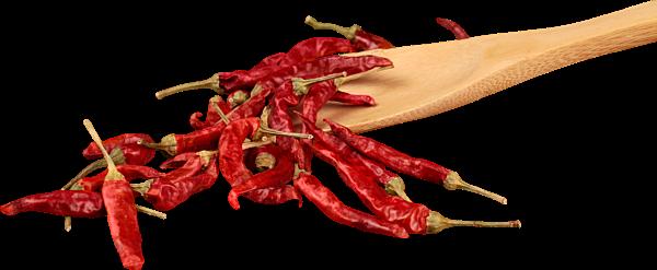 Chilis getrocknet für Oel