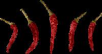 chili-oel